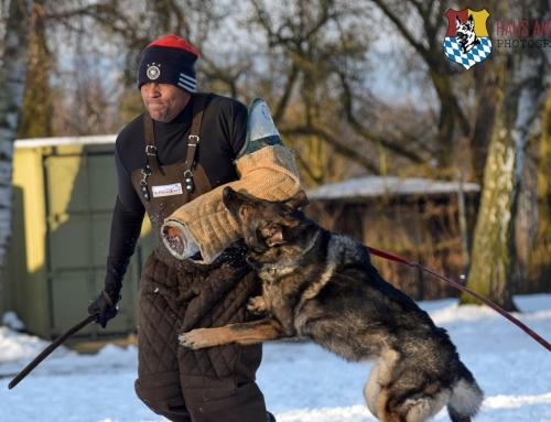 What is Schutzhund?