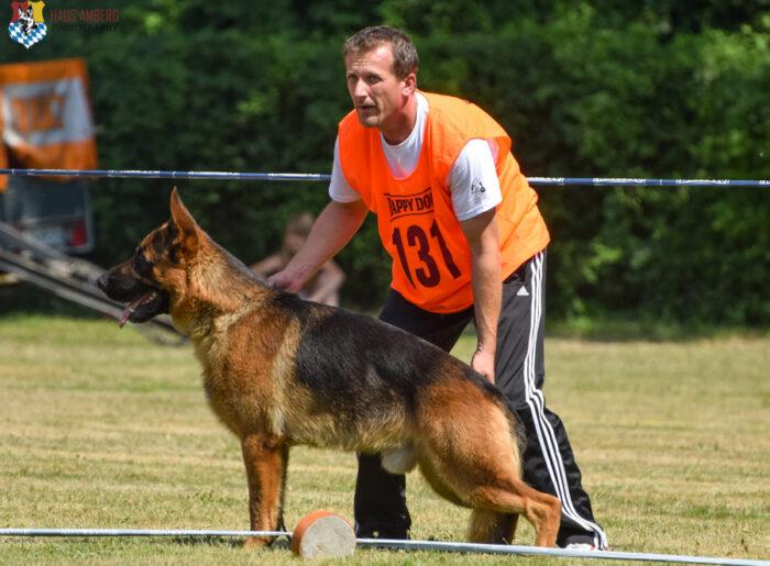 2015 Ingolstadt German Shepherd Show Recap – German Shepherd